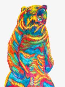 bearincolour