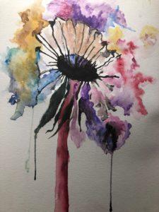 flower - daisy