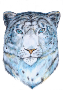 transparentsnowleopard