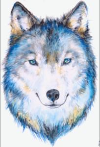 whitebackgroundwolf